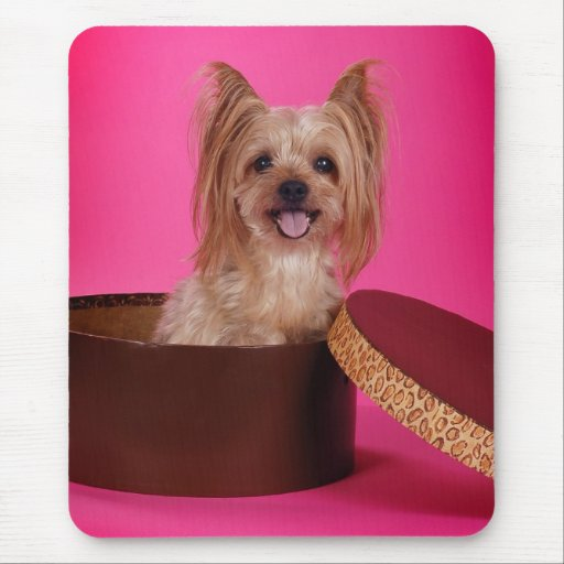 Pretty in Pink Yorkie Mouse Pad