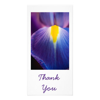 Pretty in Purple Iris Thank You Cards