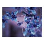Pretty In Purple Postcard