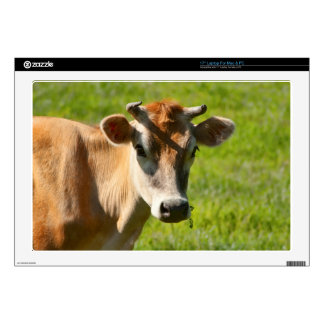 """Pretty Jersey Cow Stare 17"""" Laptop Skins"""