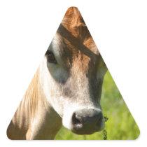 Pretty Jersey Cow Stare Triangle Sticker