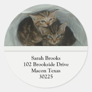 Pretty Kittens Address Labels Classic Round Sticker