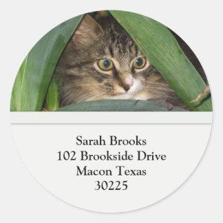 Pretty Kitty Address Labels Classic Round Sticker
