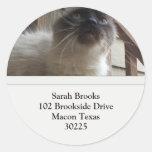 Pretty Kitty Address Labels Stickers