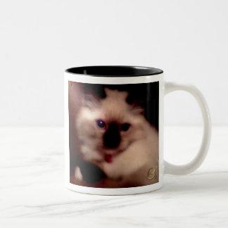 Pretty Kitty Coffee Mugs