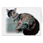 pretty kitty greeting cards