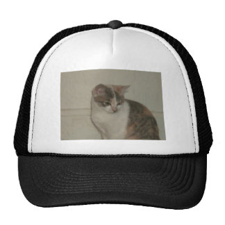 Pretty Kitty Trucker Hat
