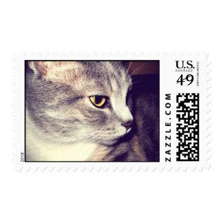 Pretty Kitty Vintage Style Postage Stamp