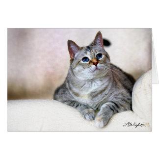 Pretty Kitty, Zilla Greeting Card