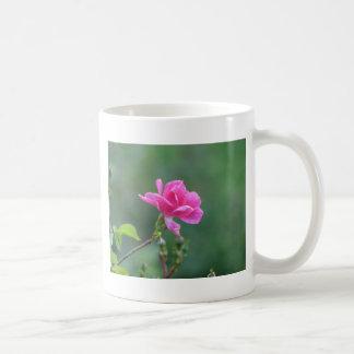 Pretty Lady 093 Mugs