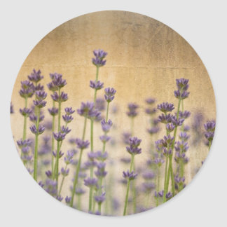 Pretty Lavender Flowers Classic Round Sticker