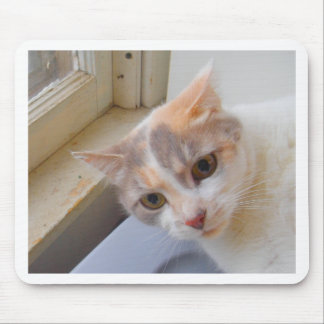 Pretty Light Colored Kitty Mouse Pad