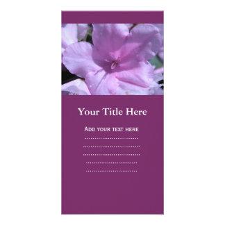 pretty light purple azalea flower photography. card