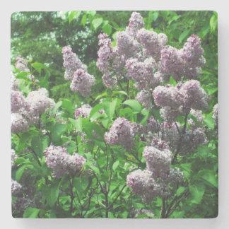 Pretty Lilac Bush Stone Coaster