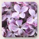 Pretty Lilacs Coasters