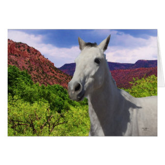 Pretty Little Gray Grey Pony with Big Eyes - Blank Card