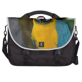Pretty Macaw Laptop Commuter Bag