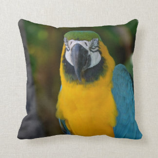 Pretty Macaw Throw Pillow