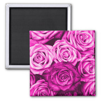 Pretty Magenta Pink Roses Flower Bouquet 2 Inch Square Magnet