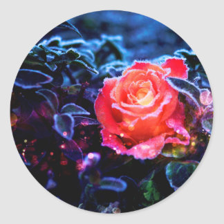 Pretty Magic Frosted Pink Fantasy Rose Garden Classic Round Sticker