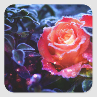 Pretty Magic Frosted Pink Fantasy Rose Garden Square Sticker
