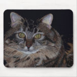 Pretty Maine Coon Cat Mouse Pad