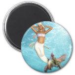 Pretty Mermaid  Magnet Magnet