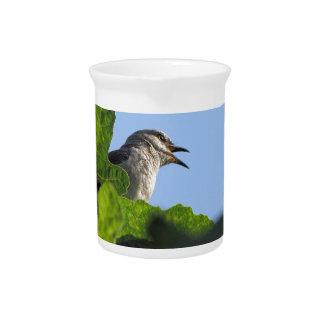 Pretty Mockingbird Drink Pitchers