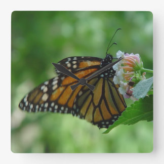 Pretty Monarch Butterfly Square Wall Clock