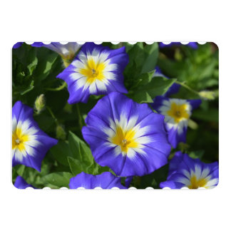 Pretty Morning Glories 5x7 Paper Invitation Card