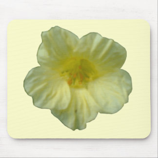 Pretty Nasturtium Flower Mousepad
