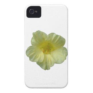 Pretty Nasturtium iPhone 4 Case