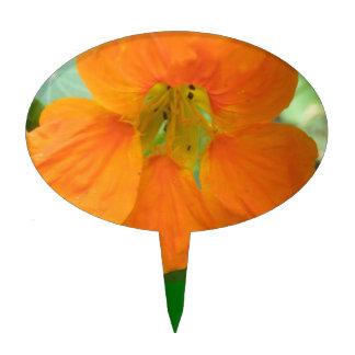 Pretty Orange Nasturtium Flower Cake Pick