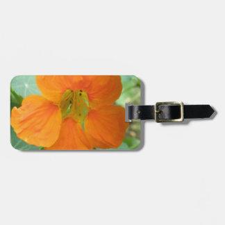 Pretty Orange Nasturtium Flower Custom Luggage Tag