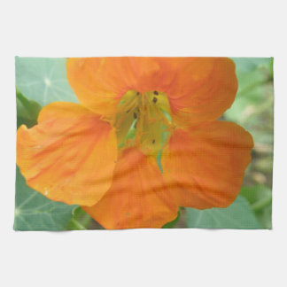 Pretty Orange Nasturtium Flower Kitchen Towel