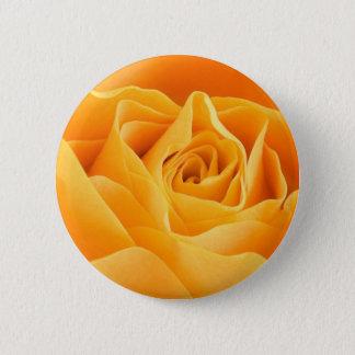Pretty Orange Rose Pinback Button