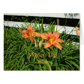 Pretty Orange Tiger Lilies Card