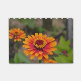 Pretty Orange Zinnia Post-it® Notes