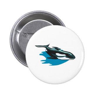 pretty orca killer whale pinback button