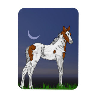 Pretty Paint Horse Foal Magnet