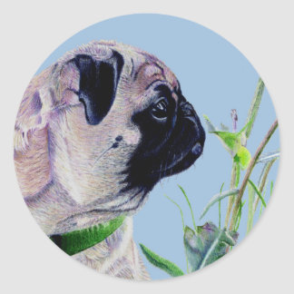 Pretty Painted Pug Stickers Round Stickers