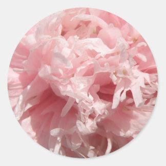Pretty Pale Pink Poppy Stickers