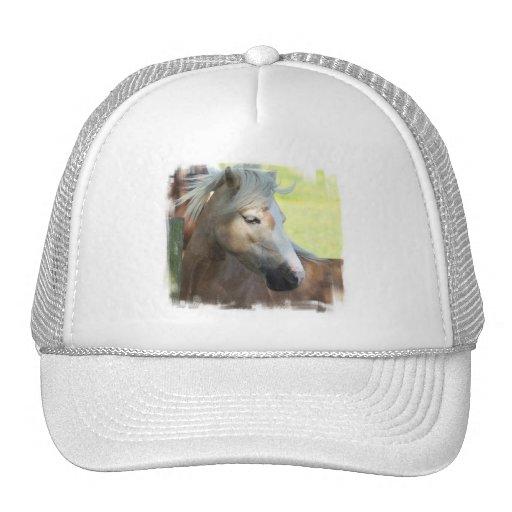 Pretty Palomino Baseball Hat