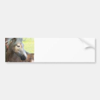 Pretty Palomino Bumper Sticker