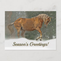 Pretty Palomino Draft Horse in the Snow Christmas Holiday Postcard