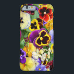 """Pretty Pansies Barely There iPhone 6 Case<br><div class=""""desc"""">A wonderful and vibrant collection of gorgeous pansies,  so many beautiful colors,  and lots of products to choose from. If you or a loved one like these friendly flowers,  this popular design is sure to be appreciated. All locally (South East Englad)  grown flowers,  photography and art work by Shirleypoppy.</div>"""