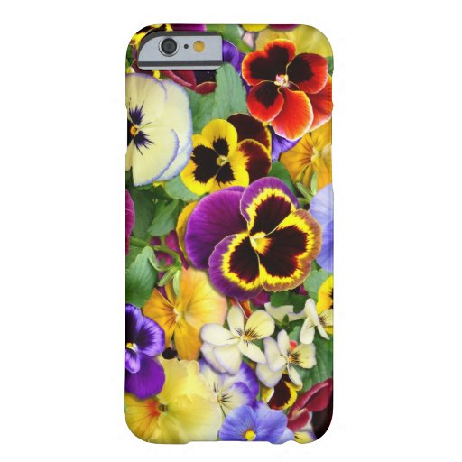 Pretty Pansies iPhone 6 Case