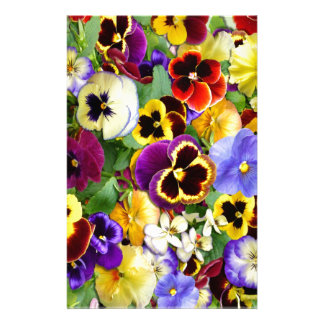 Pretty Pansies Stationery