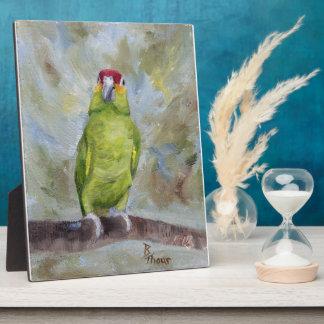 Pretty Parrot II Plaques