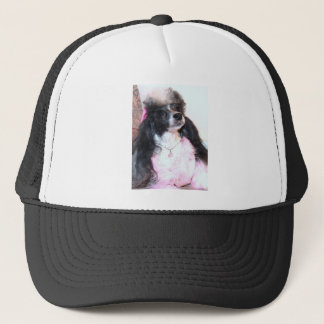 Pretty Parti Poodle in Pink Trucker Hat